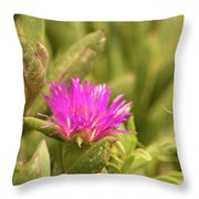Fuchsia Bloom Throw Pillow