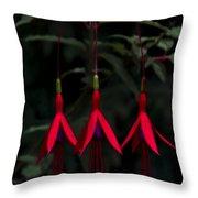 Fuchsia Bloom Throw Pillow