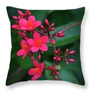 Jatrohpa Bush Blooms Throw Pillow