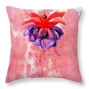 Fuchsia Blue Eyes Throw Pillow
