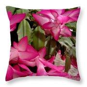 Fuchsia Christmas Cactus Throw Pillow