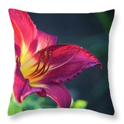 Fuchsia Glow Throw Pillow