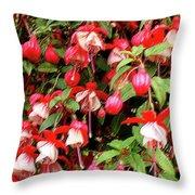 Fuchsia Pastel Throw Pillow