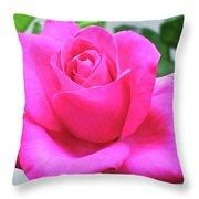 Fuchsia Rose Throw Pillow