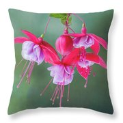 Fuchsia Cluster #6 Throw Pillow