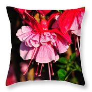 Fuchsias With Droplets Throw Pillow