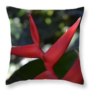 Fuego En La Selva Throw Pillow