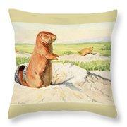 Fuertes, Louis Agassiz 1874-1927 - Burgess Animal Book For Children 1920 Prairie Dog Throw Pillow