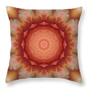 Fuji Apples Kaleidoscope Throw Pillow