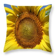 Full Throw Pillow