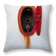 Full Display Throw Pillow