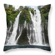 Full Frontal View Throw Pillow