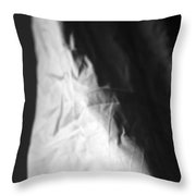 Full Of Empty Series - Lonely Widow Throw Pillow