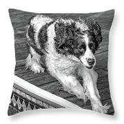 Full Tilt - English Springer Spaniel Bw Throw Pillow