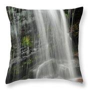 Fuller Falls Throw Pillow