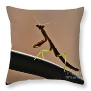 Fully Aware Throw Pillow