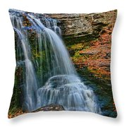 Fulmer Falls - Childs State Park Throw Pillow