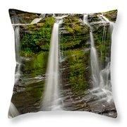 Fulmer Falls Throw Pillow
