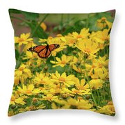 Funchal Maderia Monarch Throw Pillow