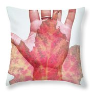 Function Of The Universe Throw Pillow