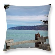 Fundy View Throw Pillow