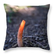 Fungi And Insect Throw Pillow
