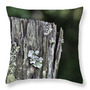 Fungi Green Throw Pillow