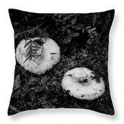 Fungi No 3 Bw Throw Pillow