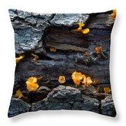 Fungi On Log Throw Pillow