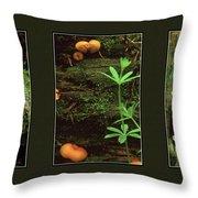 Fungi Times Three Throw Pillow