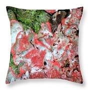 Fungus Amongst Us - Florida Palm Throw Pillow