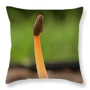 Fungus And Guest Throw Pillow