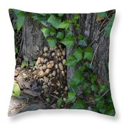 Fungus At Base Of Tree Throw Pillow