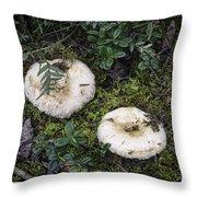 Fungi No 3 Throw Pillow