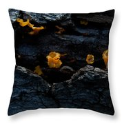 Fungus On Log Throw Pillow