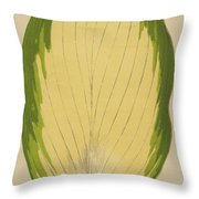 Funkia Sieboldiana Variegata Throw Pillow