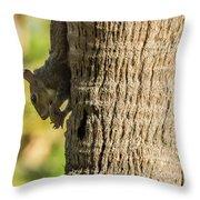 Funky Ear Squirrel Throw Pillow