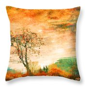 Funky Reflections Throw Pillow