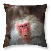 Funny Baboon Throw Pillow