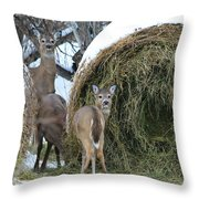 Funny Faces Throw Pillow
