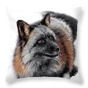 Funny Little Furry Face Throw Pillow