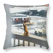 Furry Friend Throw Pillow