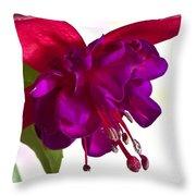 Fuschia Blossom Macro  Throw Pillow