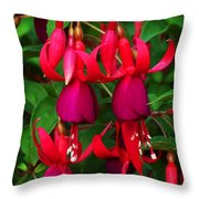 Fuschia Heron Throw Pillow