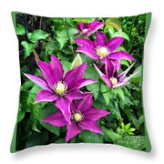 Fushia Clematis Flowers Throw Pillow