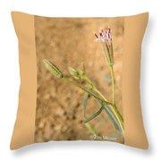 Fuzzy Flower Throw Pillow