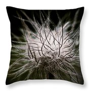 Fuzzy Flower Seedhead Throw Pillow