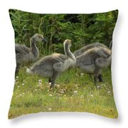 Fuzzy Fowlings Throw Pillow
