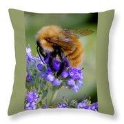 Fuzzy Honey Bee Throw Pillow