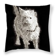 Fuzzy Molly Throw Pillow